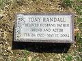 Tony Randall best 800.jpg