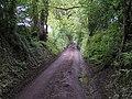 Townfield Lane - geograph.org.uk - 177354.jpg