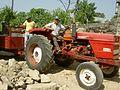 Trabalhador rural - panoramio - Belarmino Ribeiro.jpg