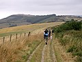 Track along the Purbeck ridgeway west of Grange Hill - geograph.org.uk - 221709.jpg