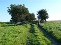 Track on Weam Common Hill - geograph.org.uk - 1492382.jpg