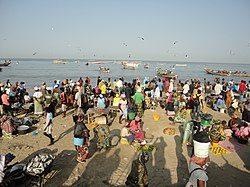 Traders at the fish market in Gambia...2.jpg