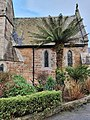 Tree fern by St Peter's Church, Newlyn.jpg
