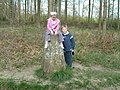 Triangulation pillar, Great Widmoor Wood - geograph.org.uk - 162780.jpg