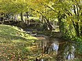 Tributary of the River Clwyd near Llangynhafal - geograph.org.uk - 1042288.jpg