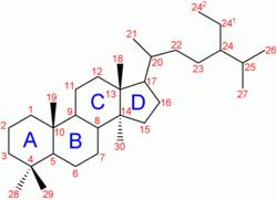 Steroid formula