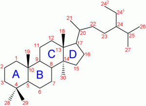 Steroidogenic enzyme - Steroid numbering.