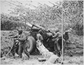 Troops of a field artillery battery emplace a 155mm howitzer in France. They have been following the advance of the ... - NARA - 531198.tif