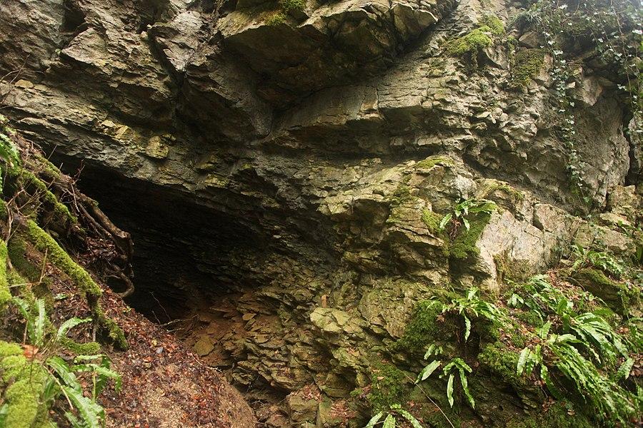 Le trou du Seris dans la RNR des grottes du cirque.