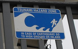 A cheery tsunami warning sign at Moonlight Sta...
