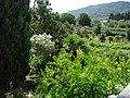 Tvrdalj Petra Hektorovića, garden.jpg