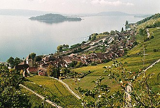Twann-Tüscherz - Twann village with Lake Biel and St. Peter's Island in background
