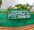 Types of Butterflies in Indira Gandhi Zoological park.jpg