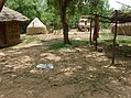 UNESCO Niokolo-Koba National Park Senegal (3686576947).jpg