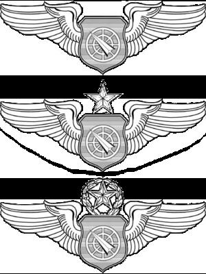 Air Battle Manager Badge - Air Battle Manager Badges
