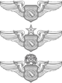 USAF - Air Battle Managers Wings.png