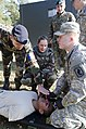 US medics train with international partners (10588887783).jpg