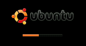 Loading screen - Loading screen of the Ubuntu operating system, displaying progress