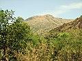 Udayagiri Hill-scene.JPG