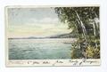 Under the Birches, Crosbyside, Lake George, N. Y (NYPL b12647398-67726).tiff