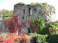 Usk Castle, Monmouthshire 08.JPG