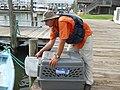 VOO Boat Operator Holds open kennel for bird (4910148413).jpg