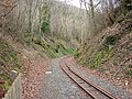 Vale of Rheidol Railway - geograph.org.uk - 724419.jpg