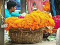 Varanasi 254c - marigold (34021082330).jpg