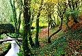 Verdes - panoramio - Javier Branas (3).jpg