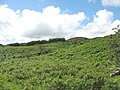 View across bracken covered hillside towards the forest - geograph.org.uk - 727546.jpg