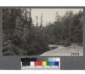 View down the Gualala River from highway bridge between Surprise Camp and Annapolis, Sonoma County. August, 1921.png