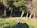 View of Wakamiya Shrine in Miyako, Miyako, Fukuoka 2.jpg