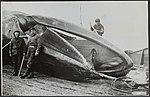 Visserij, walvisvangst, Bestanddeelnr 126-1338.jpg
