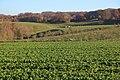 Vlaamse Ardennen 20.jpg