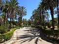 Walk in Palermo's streets (3766161543).jpg