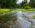 Walking Beside the Wallowa River (37833620061).jpg