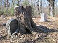 Ward Memorial Cemetery Lucy TN 015.jpg
