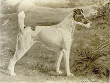 """A greyscale drawing of a pale colored dog with dark markings on the head and a spot on its back."""