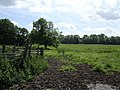 Waveney water meadows - geograph.org.uk - 473599.jpg