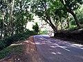 Way to Bavali, Wayanad - panoramio (1).jpg