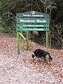 Wendover Woods - Start of Walk - geograph.org.uk - 1180508.jpg