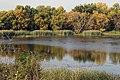 Wetland (15144380269).jpg