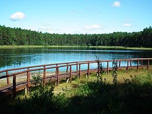 Bory Tucholskie National Park - Gacno Lake at Tuchola Forests