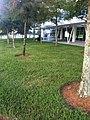 Windy Hill, Jacksonville, FL, USA - panoramio (1).jpg