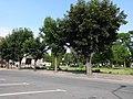 Woli teren starego miasta nr 658713 (9).JPG