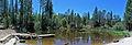 Woolman - Mel's Pond - Beach.jpg