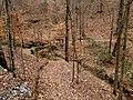 Yahoola Creek Park - panoramio - Pete Seabolt (4).jpg