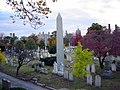 Yale cemetery from the Northeast corner.jpg