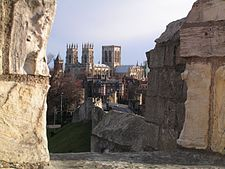 Yorkminster cathedral.jpg