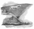 Zeichnung white horse.png